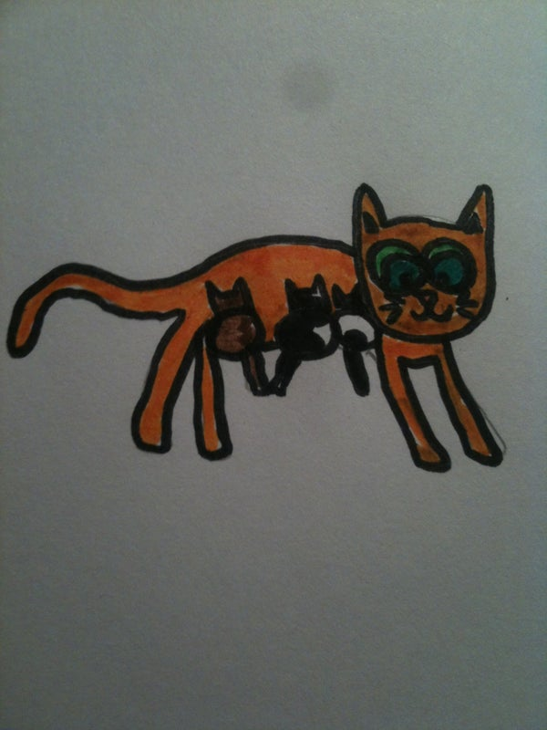 How to Draw a Cartoon Cat With Kittens!