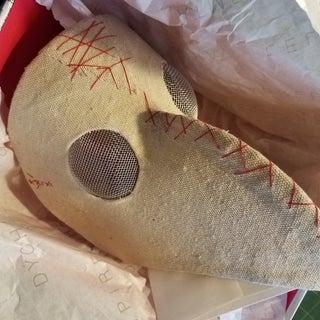 Plague Doctor Mask.jpg