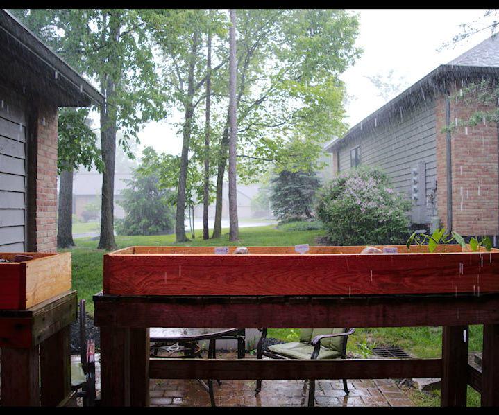 Pellet Smoking in the Rain