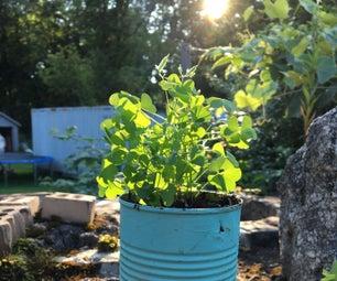 Tin Can Garden