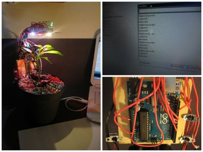 Arduino + Plant Health Monitor