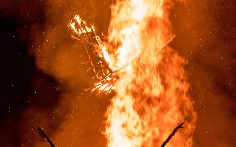 Phoenix Fire Puppet