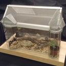 Victorian Insectarium