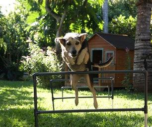 Build a Pet Agility