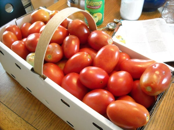 Canning Tomatoes = Summertime All Year Long!