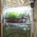 Hydroponics in basement.