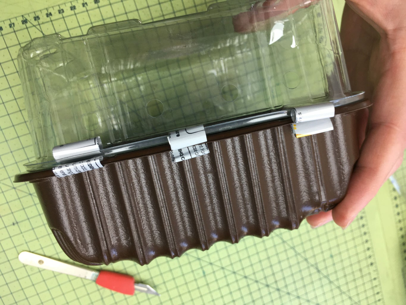 Indoor Seed Propagator - From Recycled Fruit & Veg Trays and Soda Cans