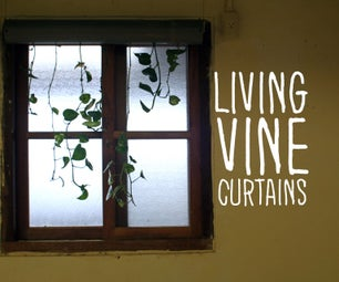Living Vine Curtains
