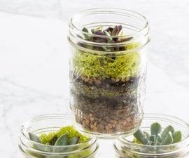 PLZ VOTE Mason Jar Mini Garden