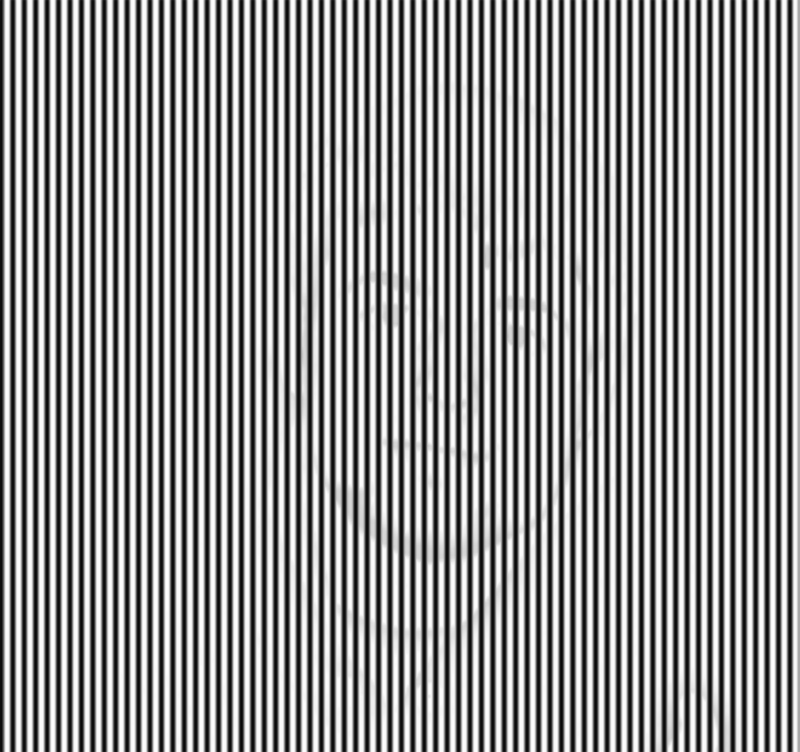 Hidden Photo Optical Illusion