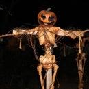 2015 Pumpkin Scarecrow