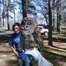 How to Handle an Owl
