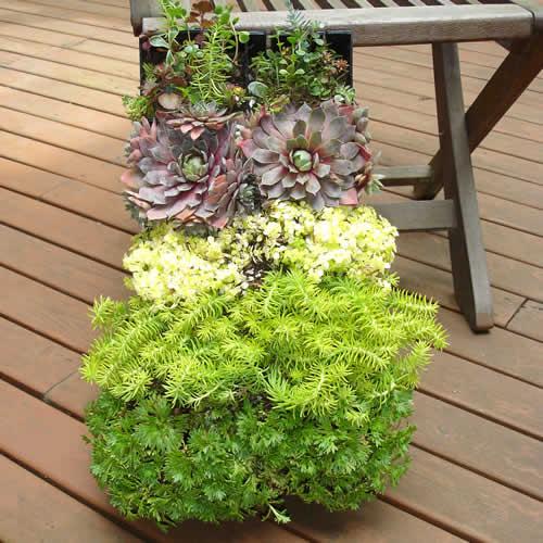 Vertical Garden W/Bright Green System
