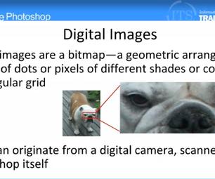 Opening Images in Photoshop: Adobe Photoshop (1.1)