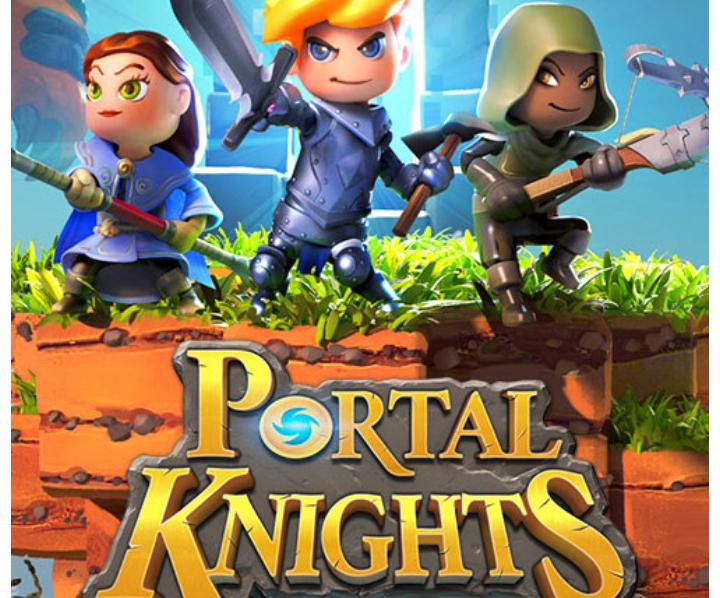Portal Knights Theme Birthday Party