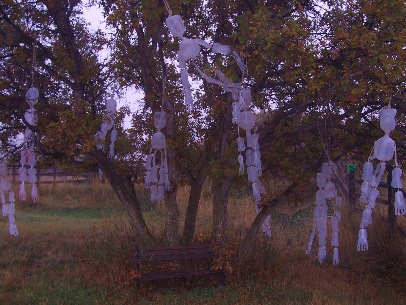 Hang Up at Halloween and Listen for Wind