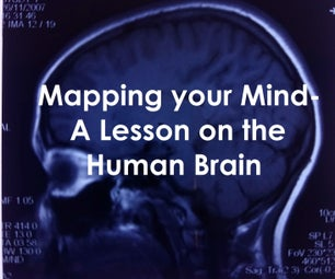 Mapping Your Mind- a Lesson on the Human Brain