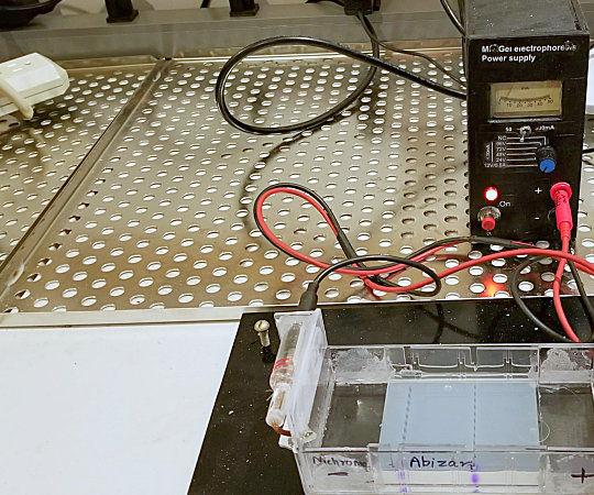 DIY Power Supply for Gel Electrophoresis