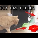 Smart Cat Feeder