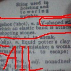 diction slingshot.jpg