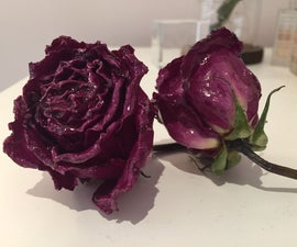 How to Make an Everlasting Glossy Rose