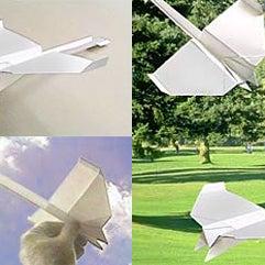 paperplane[1].jpg
