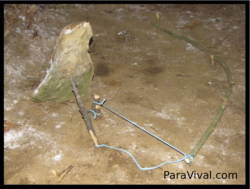 How to make a spring loaded deadfall trap using your paracord gear