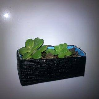 Credit-Card Flower Box (Fridge Magnet)