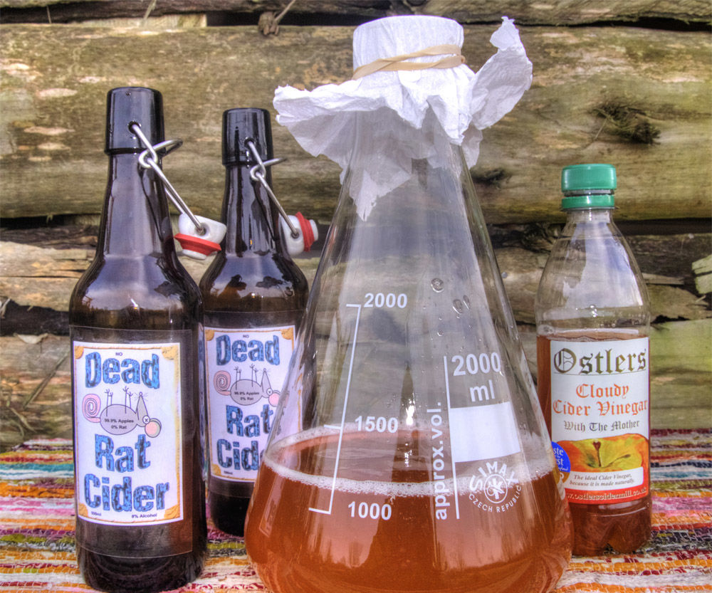 Make Apple Cider Vinegar Recipe