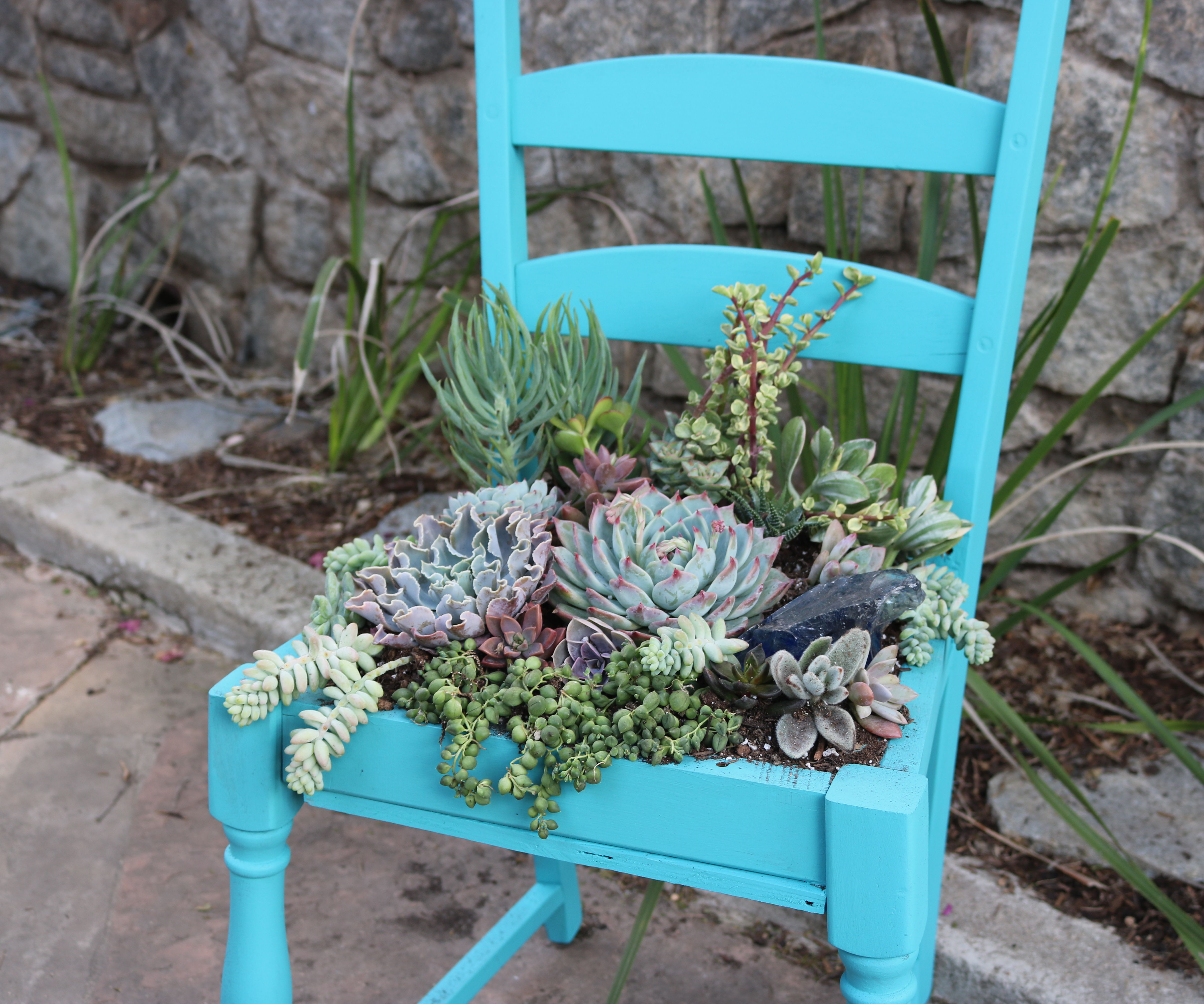 Upcycle Succulent Chair 6 Steps With Pictures Instructables