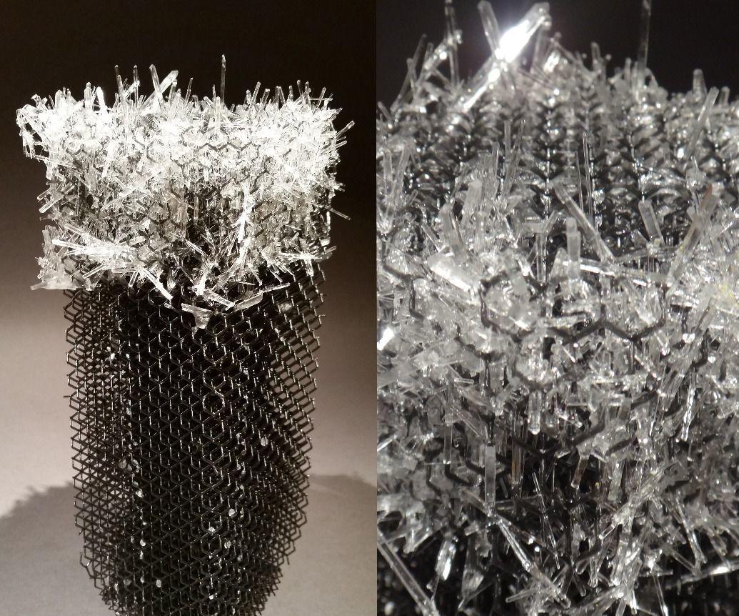 How to Grow Salt Crystals!