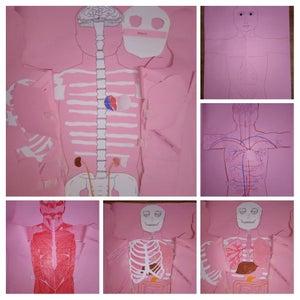 DIY Science Craft - Traversing Human Anatomy!