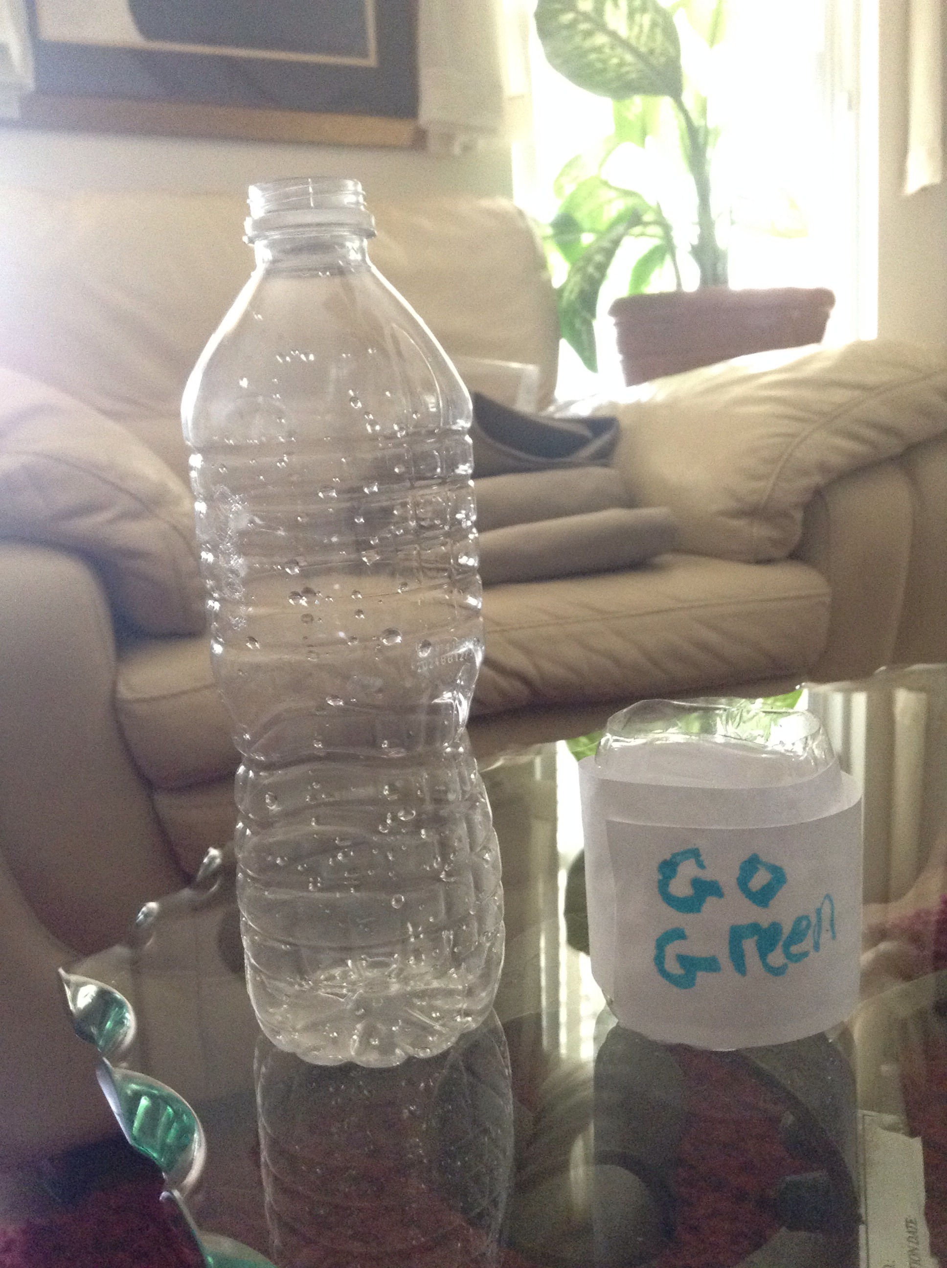 How To Make A Plant Pot Out Of A Water Bottle