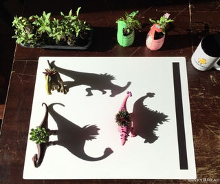 The Mythical Kitchen Plantersaurs