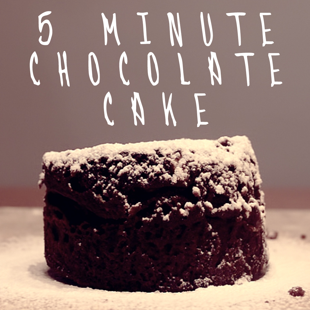 5 Minute Microwave Chocolate Cake in a Mug!