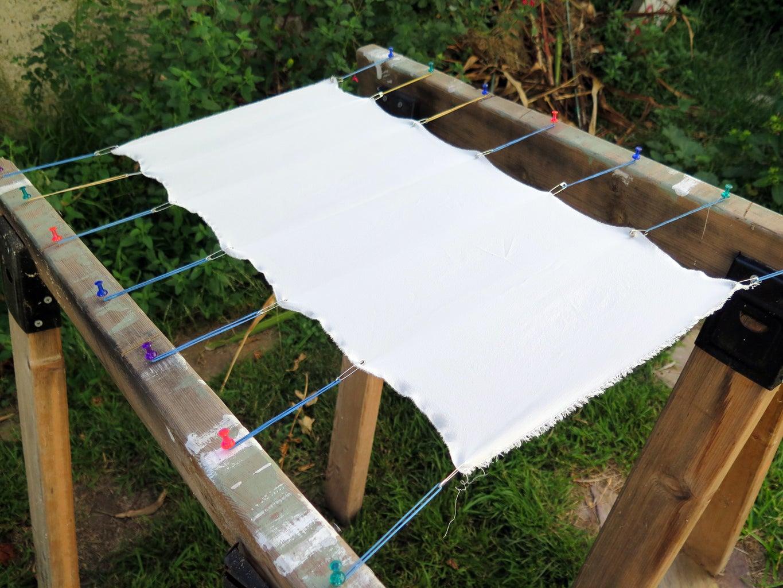 Dye Setup