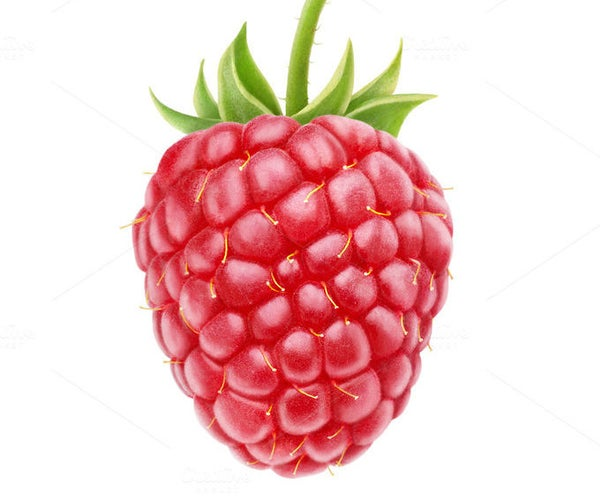 How to Create a Raspberry