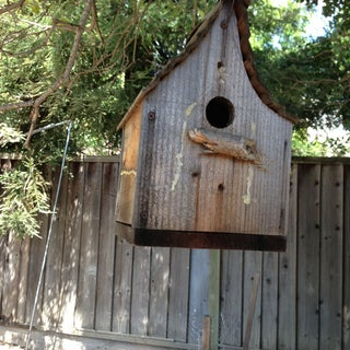 bee house.jpg