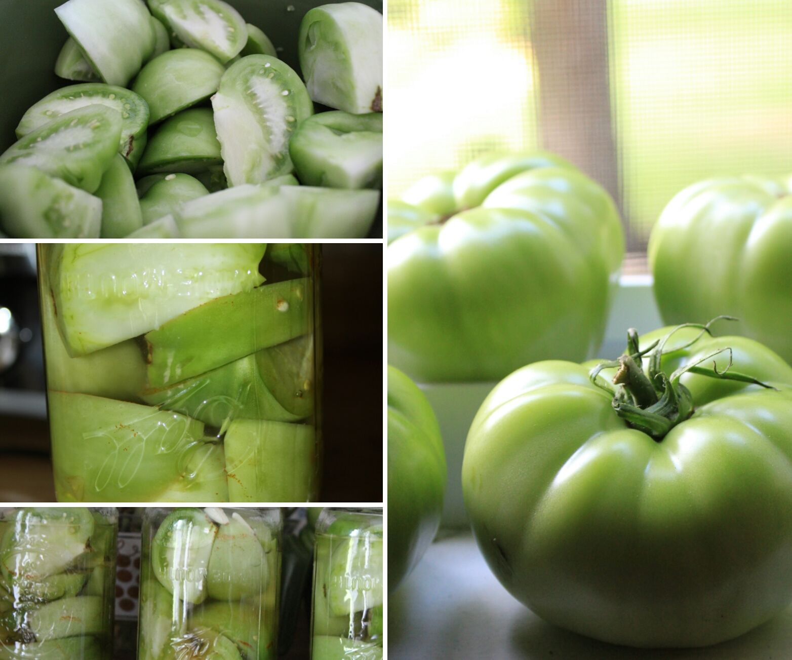 How to Can Green Tomatoes