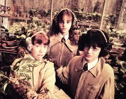 """""""I Scream You Scream We All Scream for Mandrake!"""""""