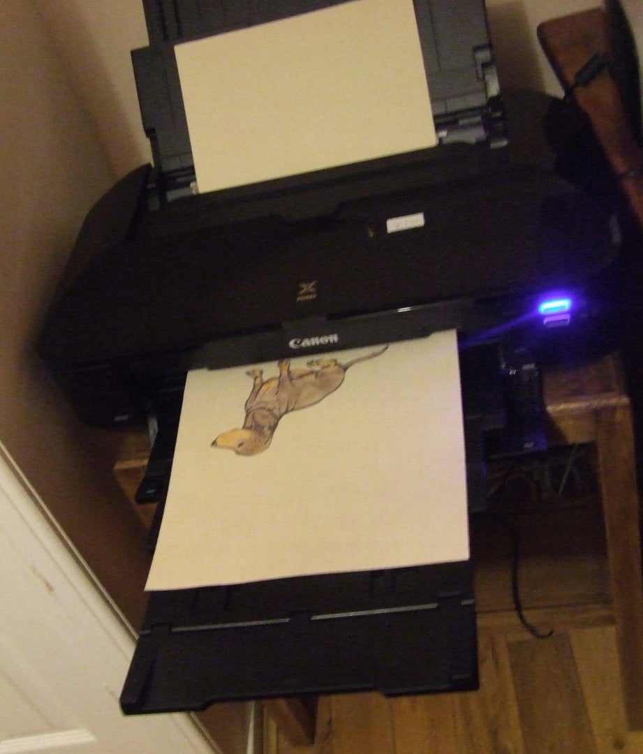 Feed Into Printer