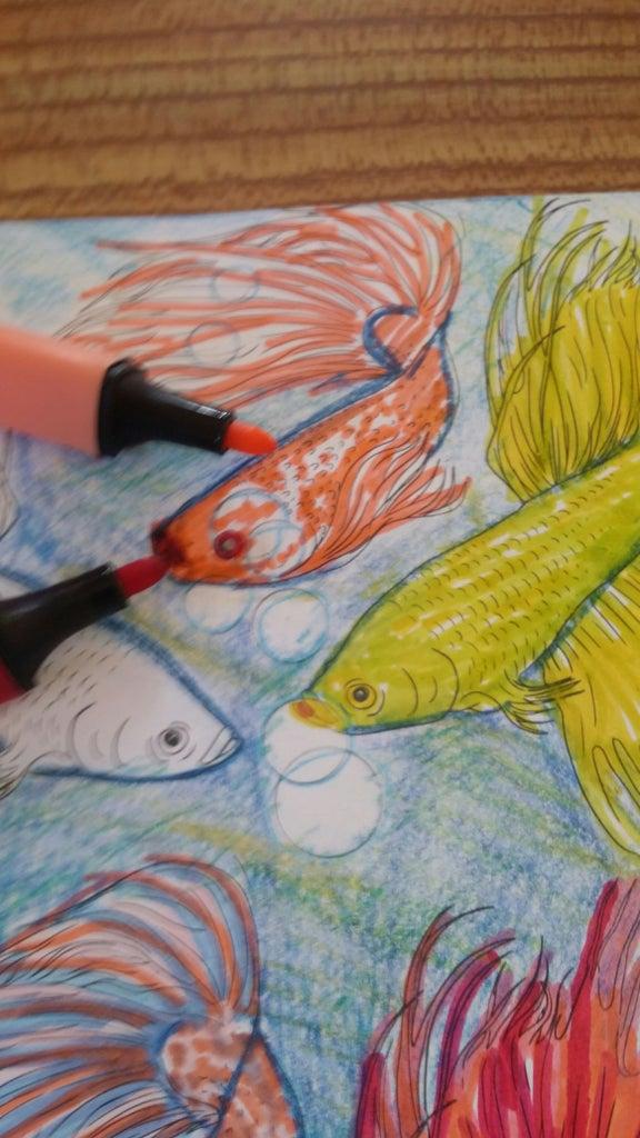 6th Fish
