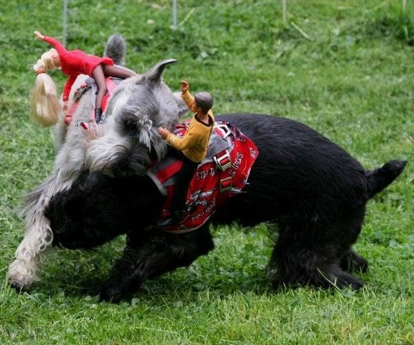 Ride 'em Cowboy Dog Costumes