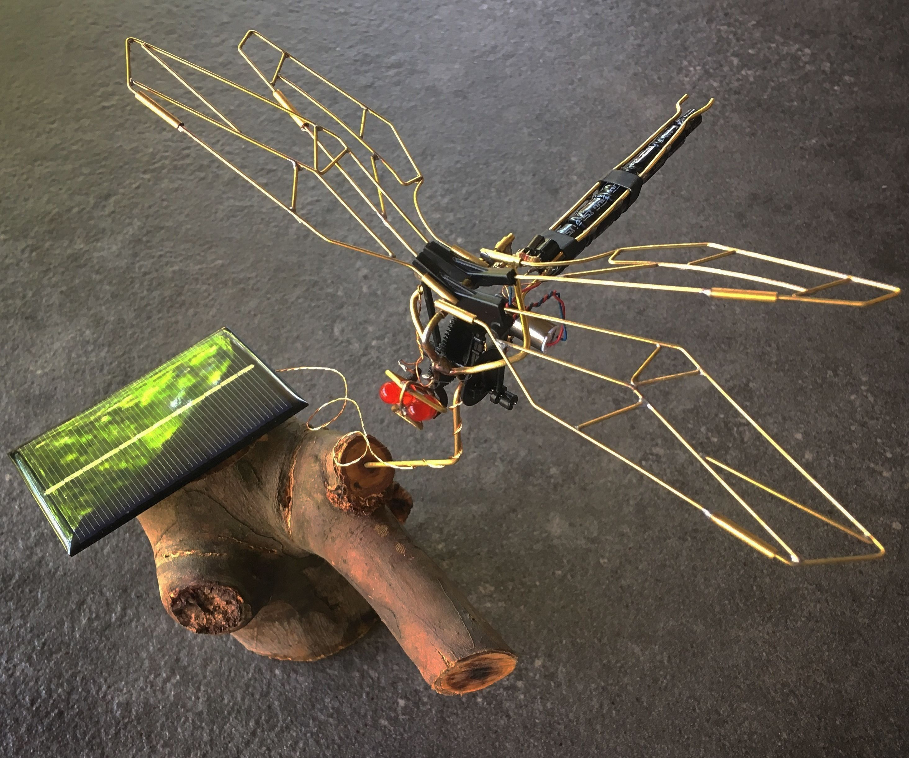 Flapping Dragonfly BEAM Robot From a Broke RC Toy