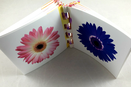 Mother's Day Bouquet Book