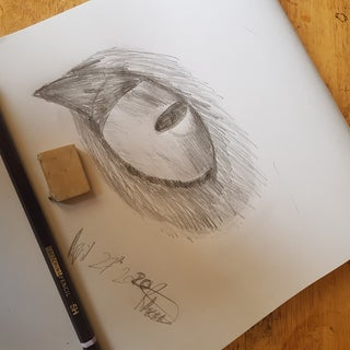 How to Draw a Cat Eye.