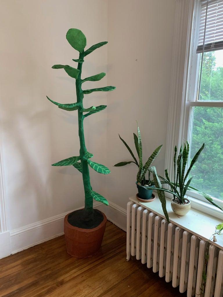 Enjoy Your Plant!