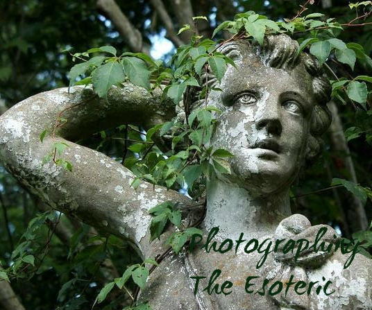 Photographing the Esoteric: Life Through the Lens