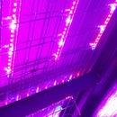Super Quick & Easy LED Growlight