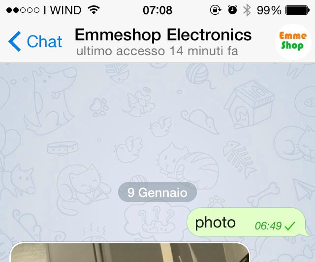 Raspberry remote control with Telegram